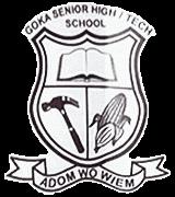 Goka Senior High-Tech